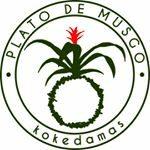 Plato de Musgo